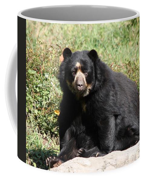 Speckled Bear Coffee Mug featuring the photograph Speckled Bear by John Telfer