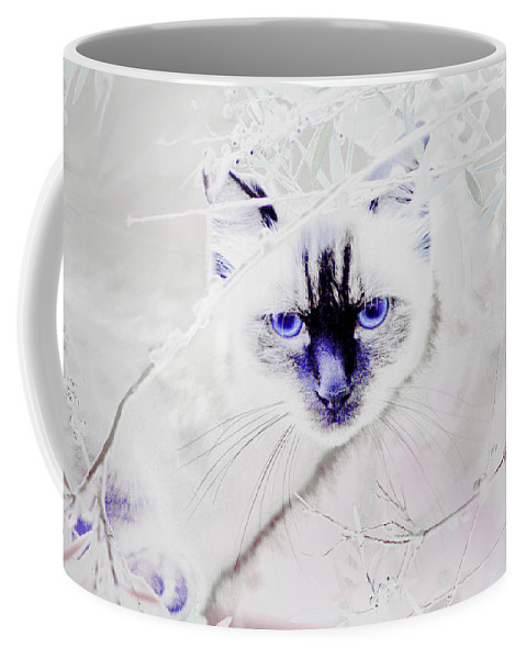 Animals Coffee Mug featuring the photograph Spellbound by Holly Kempe