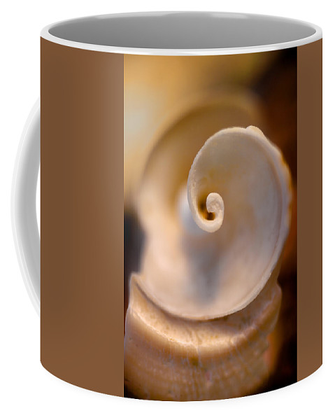Waiting Room Coffee Mug featuring the photograph Spiral Shell by David Smith