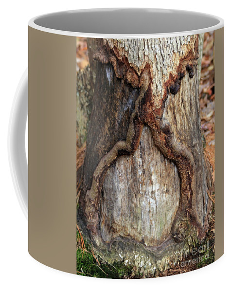 Wood Coffee Mug featuring the photograph Spirit Of The Forest by Kenny Glotfelty