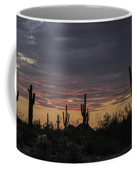Weather Coffee Mug featuring the photograph Splender At Sunset by Lorraine Harrington