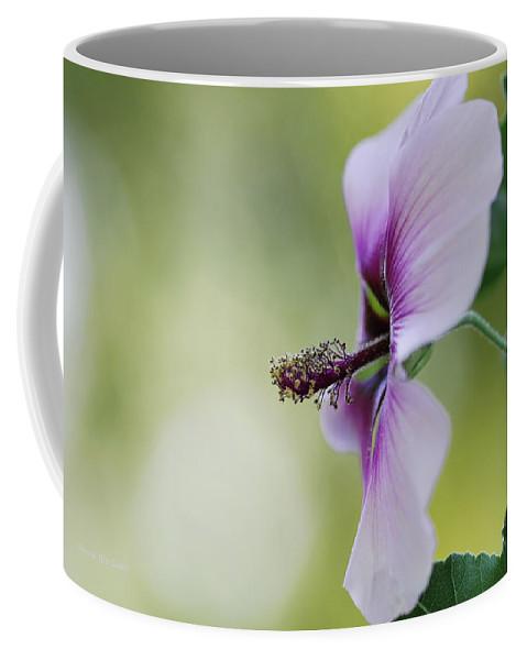 Flower Coffee Mug featuring the photograph Splendor by Donna Blackhall