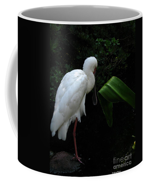 Art For The Wall...patzer Photography Coffee Mug featuring the photograph Spoonbill Morning by Greg Patzer