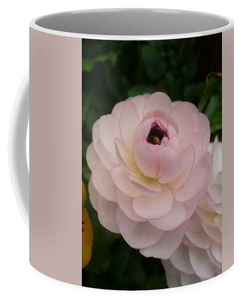 Coffee Mug featuring the photograph Spring Blooms Of 2013 A by Nicki Bennett