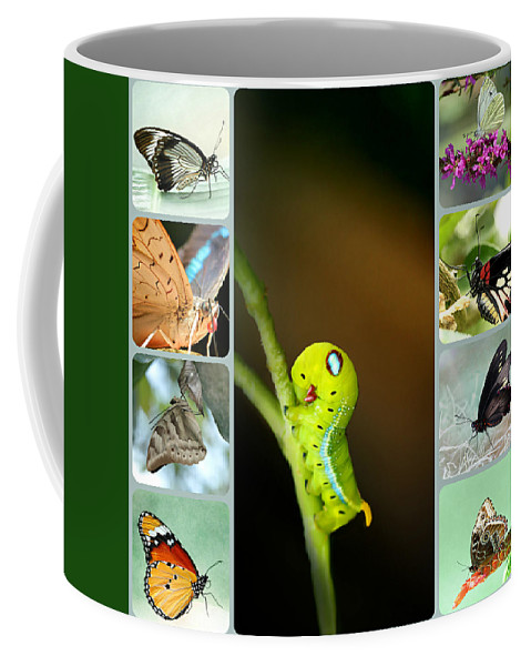 Spring Coffee Mug featuring the photograph Spring Collage by Heike Hultsch