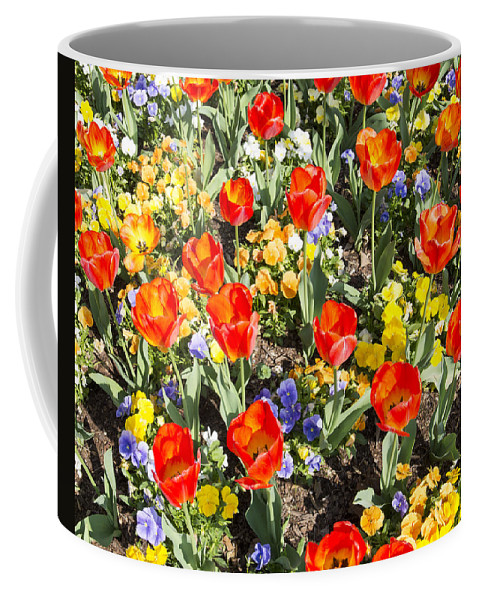 Spring Flowers Coffee Mug featuring the photograph Spring Flowers No. 2 by Greg Hager