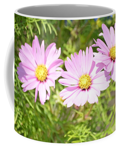 Blooming Flowers Facing Sun Coffee Mug featuring the photograph Spring Garden by Sonali Gangane