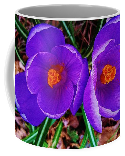 Spring Is Blooming Coffee Mug featuring the photograph Spring Is Blooming by Daniel Thompson