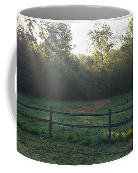 Sunbeams Coffee Mug featuring the photograph Spring Morning by Greg Kopriva