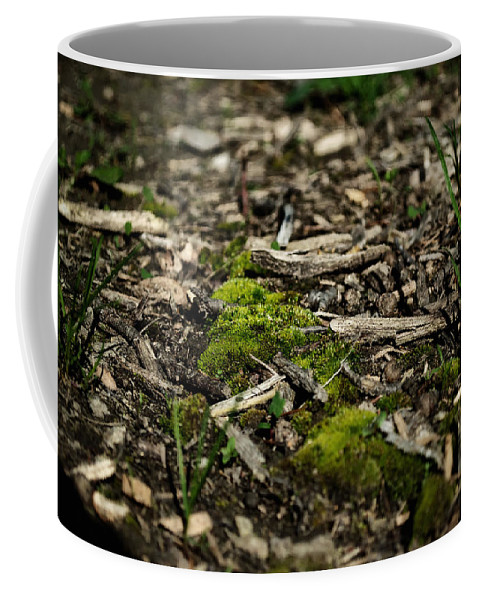 Grass Coffee Mug featuring the photograph Spring Moss by Jim Shackett