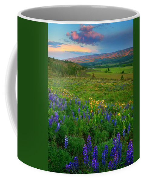 Spring Storm Coffee Mug featuring the photograph Spring Storm Passing by Mike Dawson