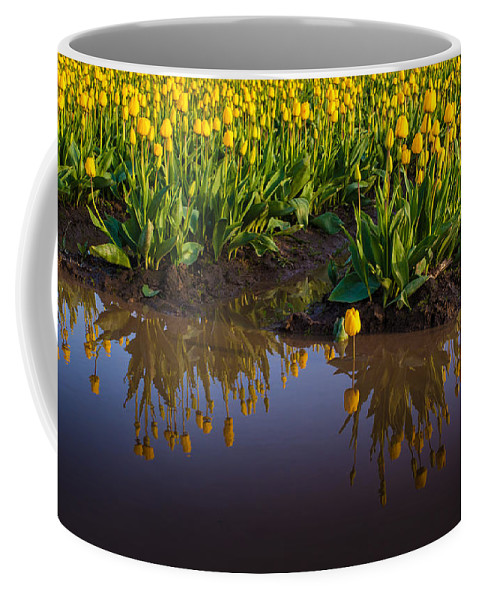 Flower Coffee Mug featuring the photograph Springs Reflection by Mike Reid