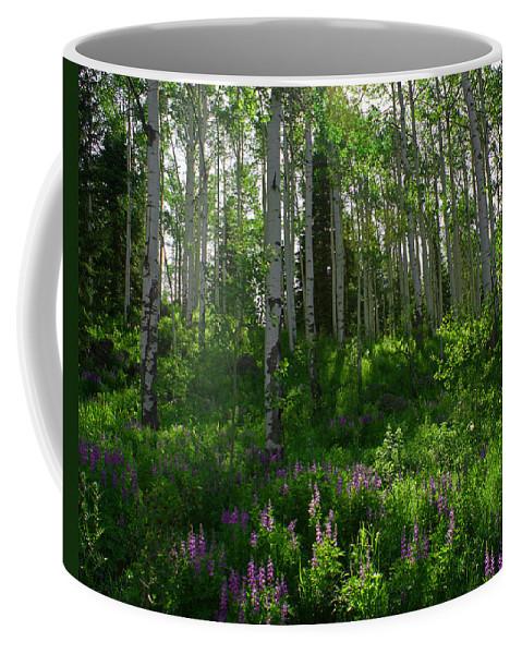 Aspens Coffee Mug featuring the photograph Springtime On The Grand Mesa by Ernie Echols