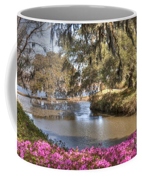 Azalea Coffee Mug featuring the photograph Springtime View by Dale Powell