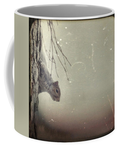 Squirrel Coffee Mug featuring the photograph Squirrel by Gothicrow Images