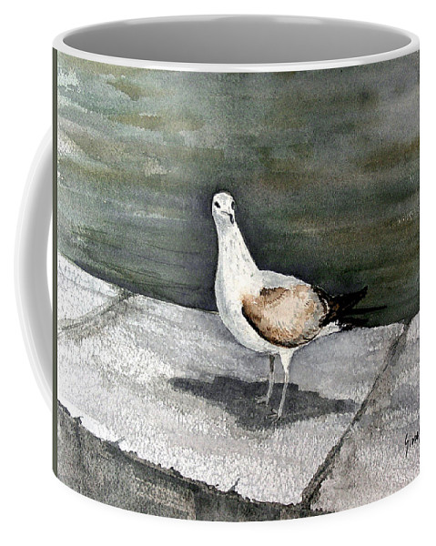 Bird Coffee Mug featuring the painting St Augustine Gull by Sam Sidders