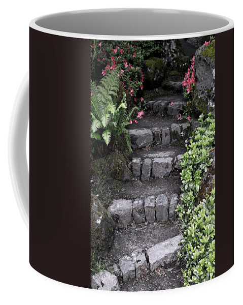 Stairs Coffee Mug featuring the photograph Stairway Path To Gardens by Athena Mckinzie