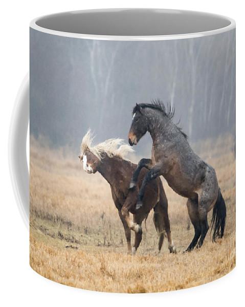 Stallion Coffee Mug featuring the photograph Stallion Challenge by Mike Dawson