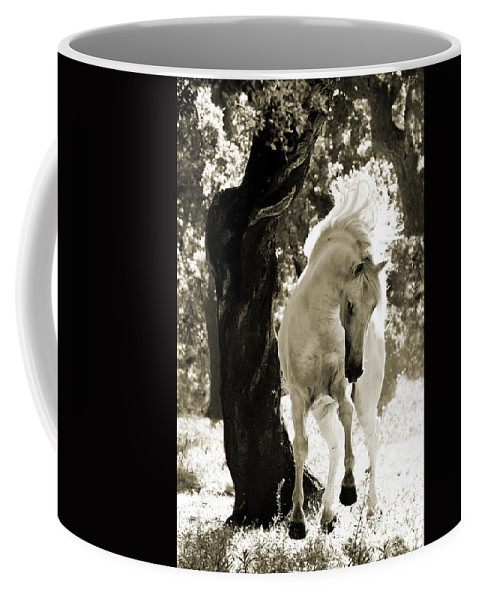 Horse Coffee Mug featuring the photograph Stallion Dances In Sepia by Carol Walker