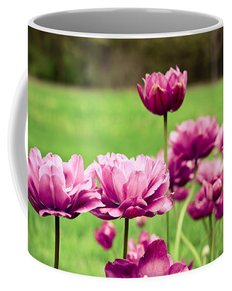 Purple Coffee Mug featuring the photograph Stand Tall by Olivia StClaire