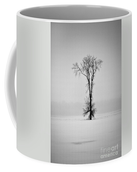 Elm Tree Coffee Mug featuring the photograph Standing Strong by Joshua McCullough