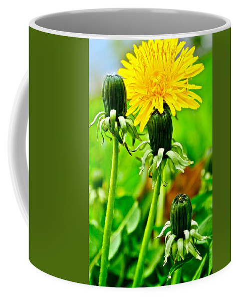 Golden Coffee Mug featuring the photograph Standing Tall by Frozen in Time Fine Art Photography