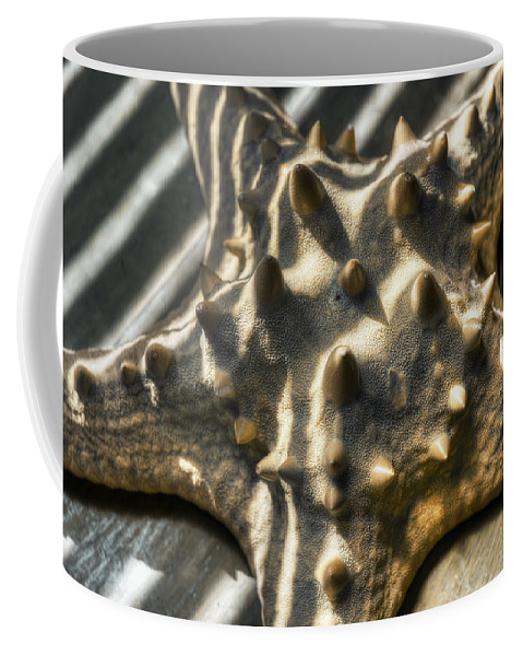 Starfish Coffee Mug featuring the photograph Star And Stripes by Wayne Sherriff