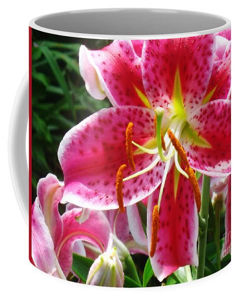 Star Gazer Lily Coffee Mug featuring the photograph Star Gazer by Janell R Colburn