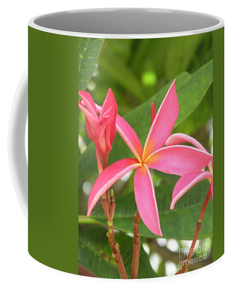 Plumeria Coffee Mug featuring the photograph Starburst Plumeria by Mary Deal
