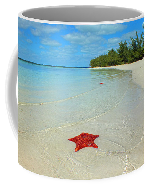 Duane Mccullough Coffee Mug featuring the photograph Starfish 5 Of Bottom Harbour Sound by Duane McCullough