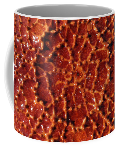 Duane Mccullough Coffee Mug featuring the photograph Starfish Upclose Abstract by Duane McCullough