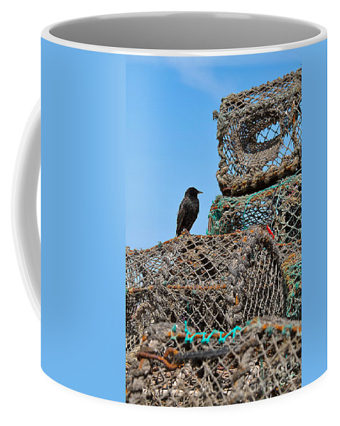 Starling Coffee Mug featuring the photograph Starling On Lobster Pots by Louise Heusinkveld