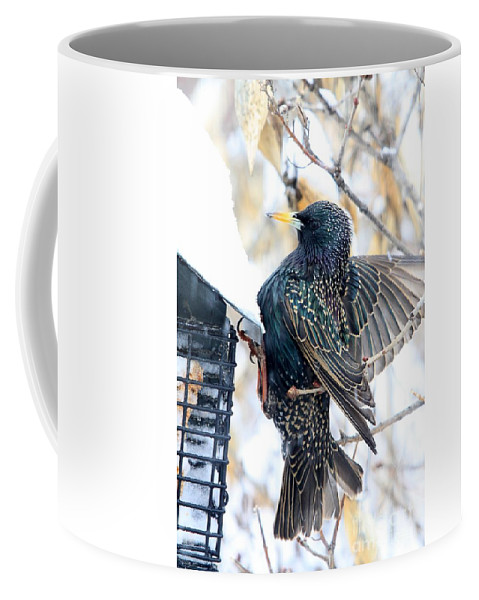 Bird Coffee Mug featuring the photograph Starling by Rick Rauzi