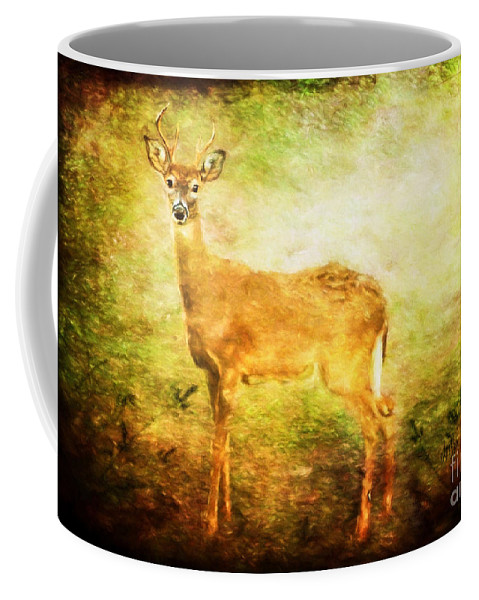 Deer Coffee Mug featuring the photograph Startled by Lois Bryan