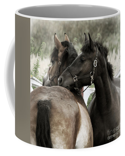 Valentines Coffee Mug featuring the photograph Staying Together by Angel Tarantella