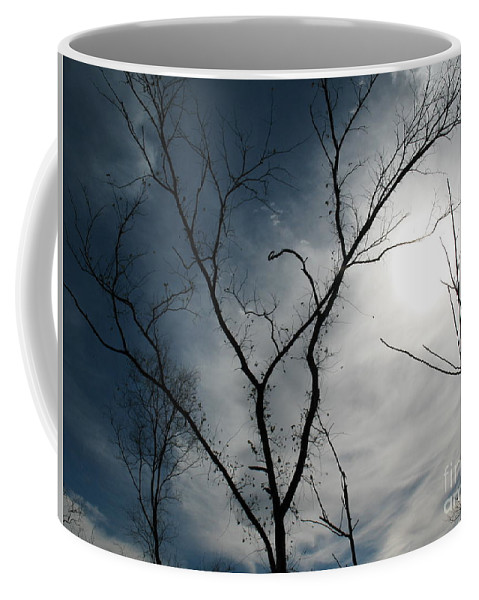Kerisart Coffee Mug featuring the photograph Steal Trees by Keri West