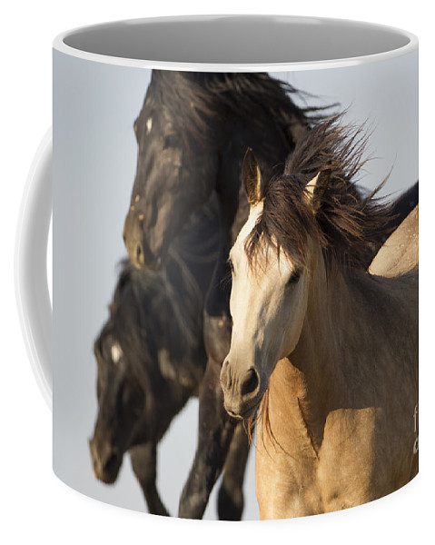 Horse Coffee Mug featuring the photograph Stealing The Mare by Carol Walker