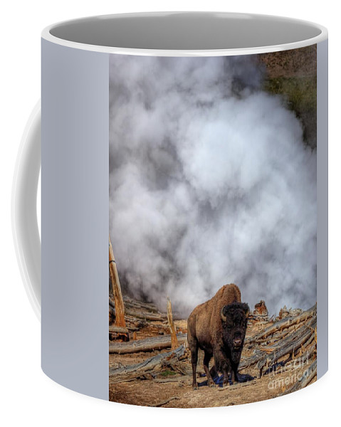 Bison Coffee Mug featuring the photograph Steamed Bison by James Anderson