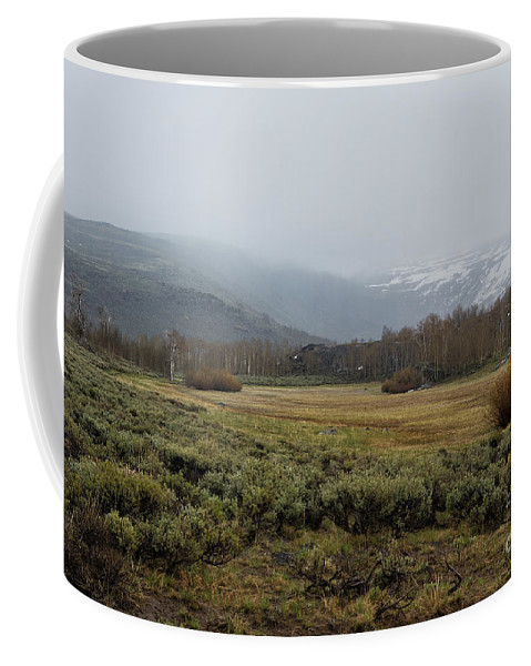 Landscape Coffee Mug featuring the photograph Steens Mountain Landscape - No 2a by Belinda Greb