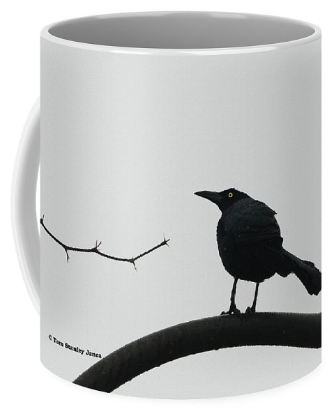 Stick-grackle And Bar Thats All Coffee Mug featuring the photograph Stick-grackle And Bar Thats All by Tom Janca