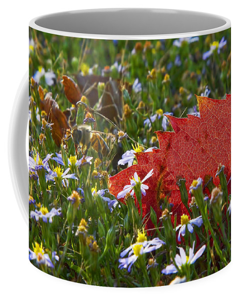 Winter Coffee Mug featuring the photograph Stocking Up For The Winter by Gary Holmes