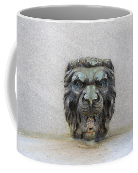 Lion Coffee Mug featuring the photograph Stone Face by Aaron Martens