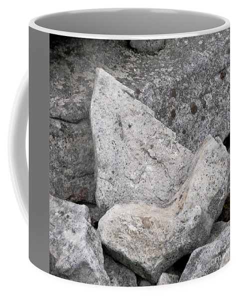 Stone Tooth Shark Tooth Stone Tooth Shaped Rock Geology Gray Rocks Gray Stones Appalachian Landscapes Stonescape Rockscape Natural Design In Nature Prints Strange Nature Fossil Imposter Coffee Mug featuring the photograph Stone Tooth by Joshua Bales
