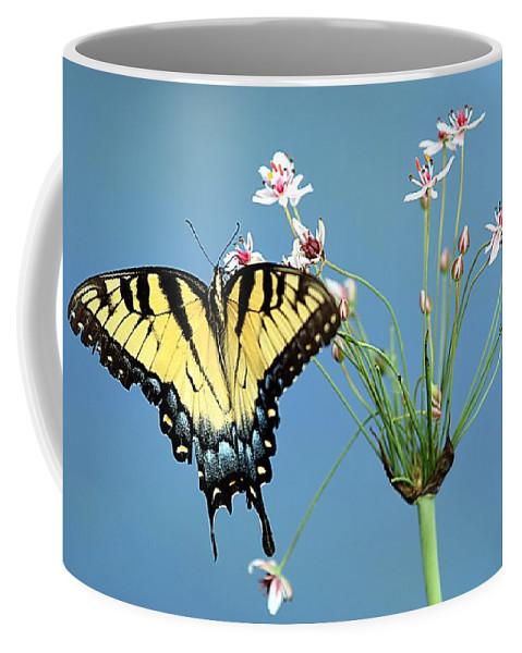 Tiger Swallowtail Butterfly Coffee Mug featuring the photograph Stop And Smell The Flowers by Elizabeth Winter
