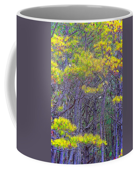 Pine Trees Coffee Mug featuring the photograph Straggly Pines by Alice Gipson