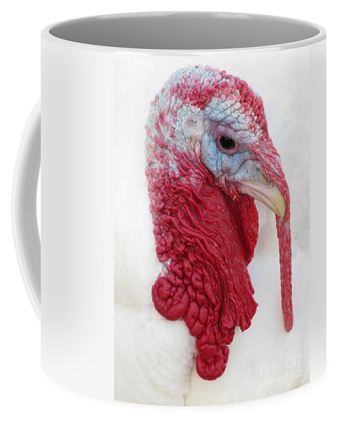 Turkey Coffee Mug featuring the photograph Strange Beauty by Ann Horn