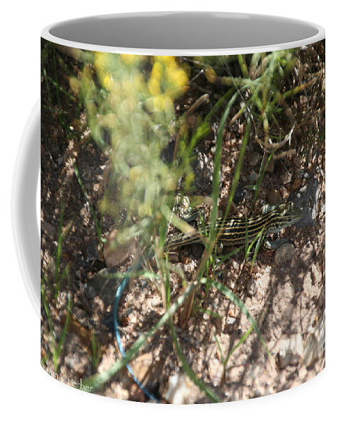 Lizzard Coffee Mug featuring the photograph Striped Cammo by Susan Herber