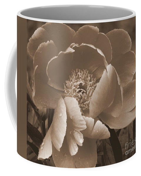 Subdued Coffee Mug featuring the photograph Subdued by Eunice Miller