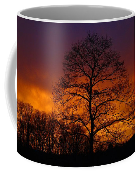 Sunset Coffee Mug featuring the photograph Sudden Surprise by Kathryn Meyer