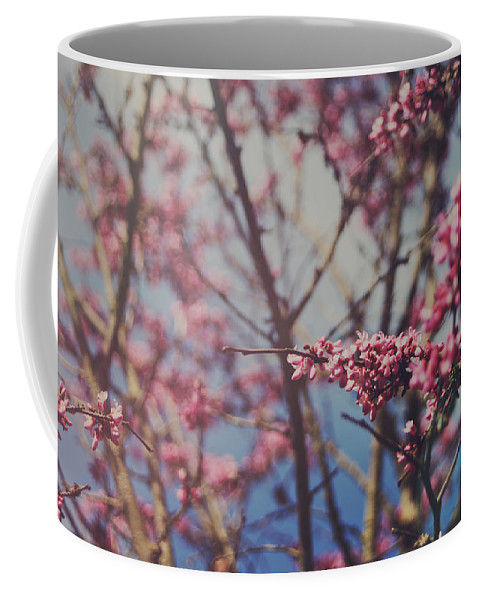 Lafayette Coffee Mug featuring the photograph Sugar by Laurie Search